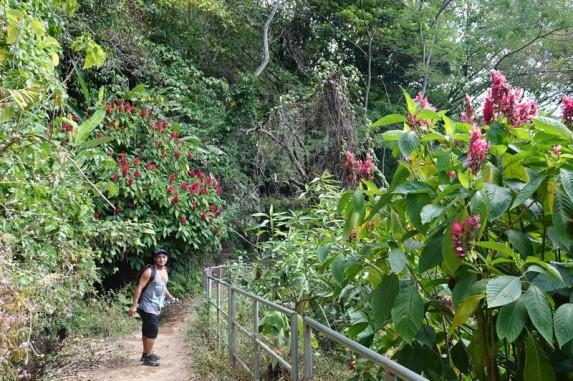 Route des Fleurs - Non loin de Juayu, Los Chorros de Calera - Roberto, notre chauffeur-guide