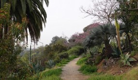 San Diego - Balboa Parc - Chemin dans le canyon Florida