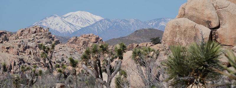 Superbe rando dans les extraordinaires formations géologiques du Joshua Tree NationalPark