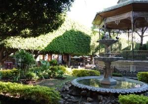 Guanajuato - Jardin de la Union