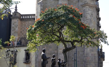 Guadalajara - Vers la Rotonda de los Jaliscenses Ilustres