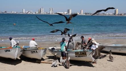 Mazatlan - Malecon - Barques de pêcheurs