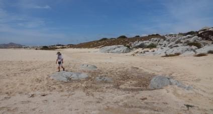 Cabo San Lucas - Plage de Médano, vers les dunes