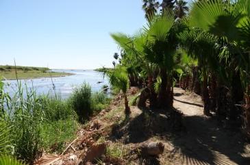 San José del Cabo - Estuaire San José