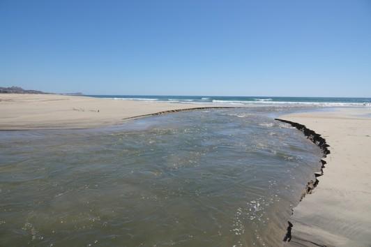 Plage de San José del Cabo - Petit bras de rivière devant lequel on recule !