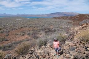 Loreto - Excursion sur l'ile Coronado - Pieds bleus !