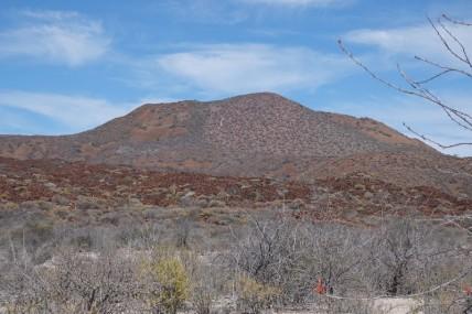 Loreto - Excursion sur l'ile Coronado - On voit bien le chemin d'éboulis qu imène au sommet....