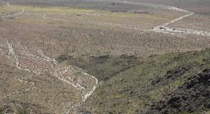 Route 79, entre Sant Ysabel et le désert d'Anza-Borrego