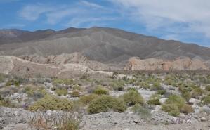 Route 78, désert d'Anza-Borrego