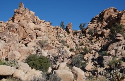 Joshua Tree National Park - Hidden Valley