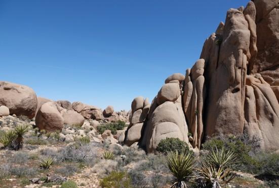 Joshua Tree National Park - Split Rocks