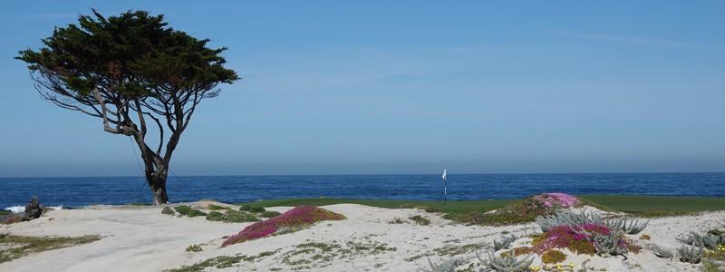 Découverte de la superbe côte Pacifique, dans les environs de Monterey et deCarmel