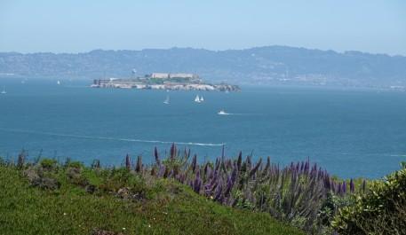 San Francisco - Balade à pied sur le coastal trail - Crissy Field - Au loin, Alcatraz...