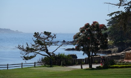 17-Mile Drive - Pebble Beach Golf