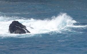 Sur la côte Pacifique, dans la région de Big Sur