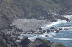 Sur la côte Pacifique, dans la région de Big Sur - Éléphants de mer sur la plage