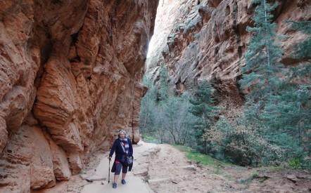 """Parc national de Zion - Angels Landing Trail - Dans le """"Refrigerator"""""""