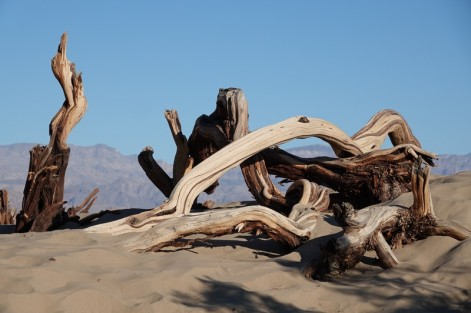 Death Valley National Park - Mesquite Sand Dunes