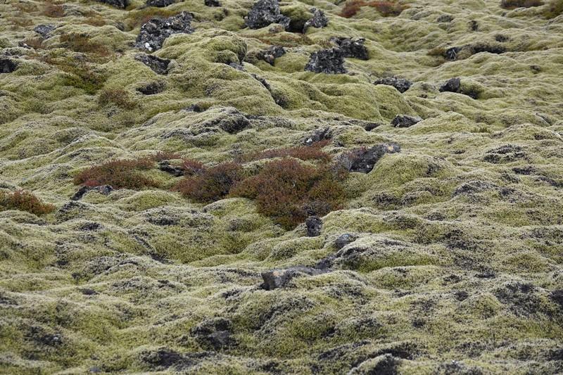 Islande - 02-3