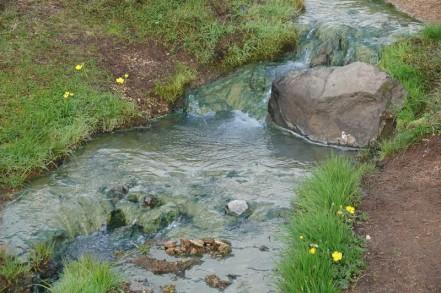 Vallée de Reykjadalur - Et toujours cette eau très verte de la rivière donnée par les algues...