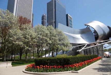 Chicago - Millenium Park - Jay Pritzker Pavillon