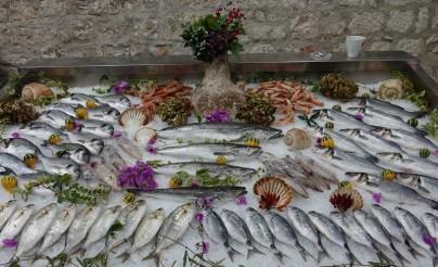 Trogir - Marché aux poissons
