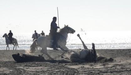 Les Saintes Maries de la Mer - Fête de la Maintenance - Chute d'un cavalier