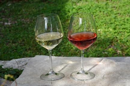 Alberobello - Trullo Sovrano - Dégustation de vin