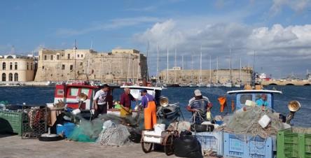 Gallipoli - Port de pêche