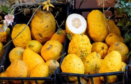 Taormina - Le citron, une spécialité de la région...