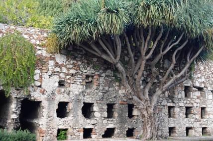 Taormina - Nécropole romaine
