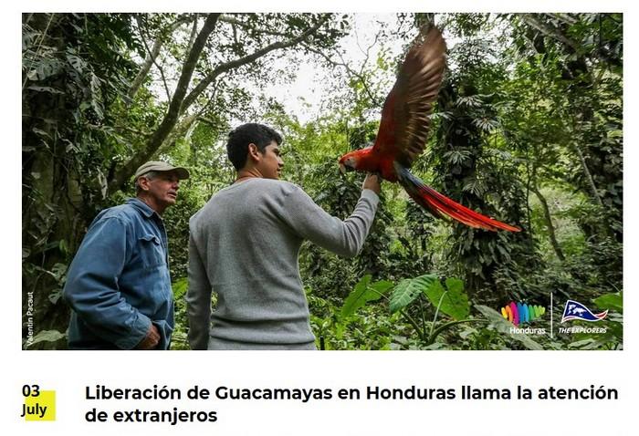Honduras04.07.20 - 2